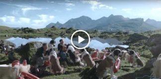 Как Швейцария готовится к туристическому сезону